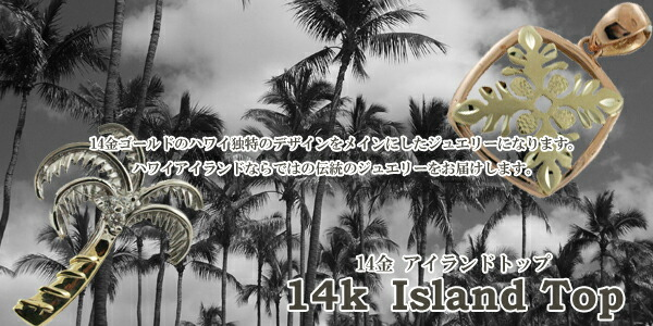 14kアイランドデザイントップ
