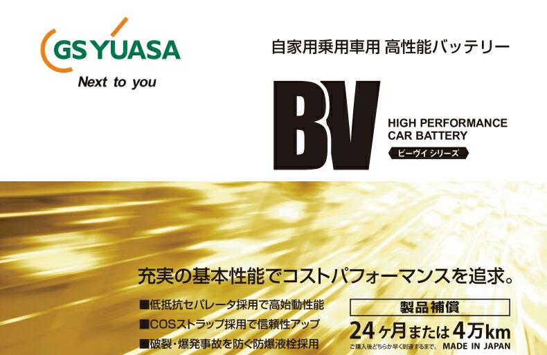 bv-battery-01