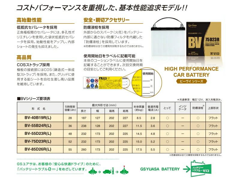 bv-battery-03