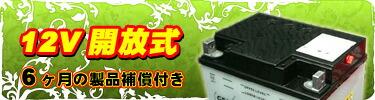 GSユアサ12V開放式バッテリー