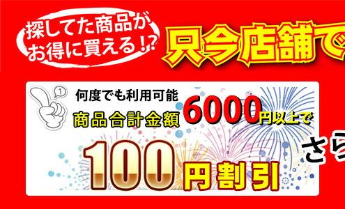 合計金額6000円以上で100円クーポン