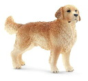 Golden Retriever (Male)(Released)
