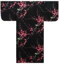 Clothes-0001137