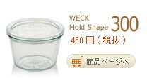 MoldShape300