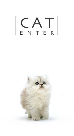 CAT ENTER