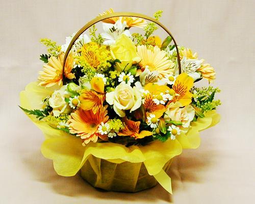http://image.rakuten.co.jp/anne/cabinet/00277019/img24881726.jpg