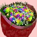 彩虹色 bararainbow 玫瑰奇迹