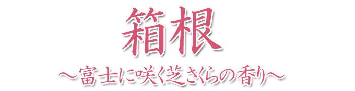 箱根  芝桜 微煙