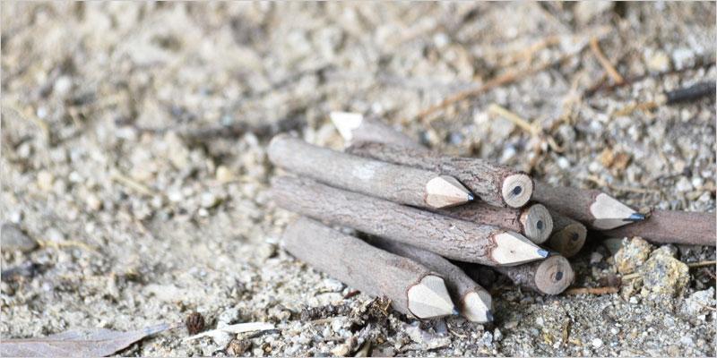 AD2 ネイチャーペンシル (木の鉛筆10本セット)【鉛筆 ペンシル 木 枝 エーディーツー 自然 ハンドメイド インテリア雑貨 ステーショナリー デスクアクセサリー】