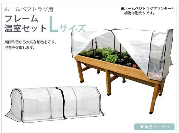 ホームベジトラグ用 フレーム温室セットL