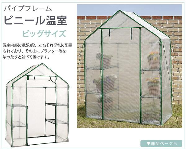 パイプフレーム ビニール温室 ビッグサイズ