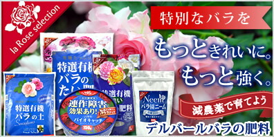 �֥ǥ�С���Х��������la Rose selection��
