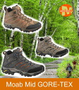 Merrell MOAB MID GORE-TEX XCR 3Colors Merrell Moab mid Gore-Tex XCR sports-star 3 color deployment Otter, DARK TAN, BELUGA men's outdoor ゴアッ TeX sneakers