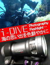 i-DIVE