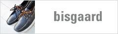 bisgaard(�ӥ���)