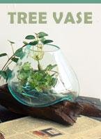 �ڤȰ��β��������� tree vase