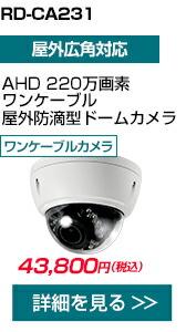 RD-CA231