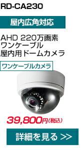RD-CA230