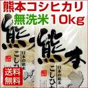 Kumamoto Prefecture of Koshihikari rice without rice 10 kg 26 annual Koshi Hikari rice rice
