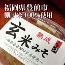 Homemade Brown rice miso-free miso