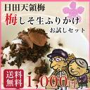Plum farmer ume shiso students sprinkle try 2 type set in plum village, Oita Prefecture Oyama, plum 100%