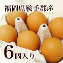 Entering six Kyushu fresh eggs having just finished laying it from Fukuoka