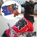 «Wang Chan-cat!» pet vest ( cloth kimono yukata for dogs dog dog dog pussy happi happi )