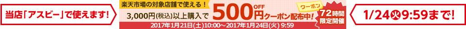 20170121_500円クーポン