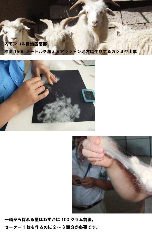 プルオーバー クルーネック 【カシミヤ 100%】