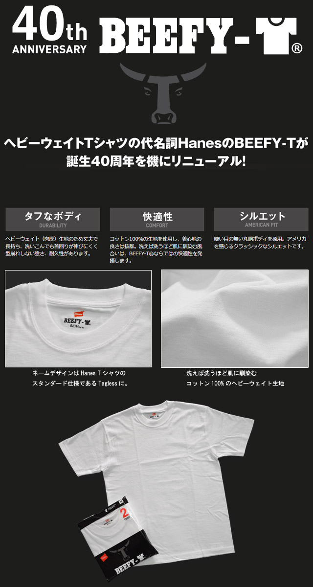 BEEFY-T (2枚組) 【H5180-2】 GRAY