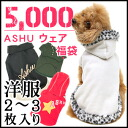 Clothes pet 5P13oct13_b of the lucky bag / dog for ASHUware lucky bag 5,000 yen / dogs