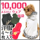 2012 Winter ASHU garment bag ¥ 10,000 / dog clothing and pet 5P13oct13_b