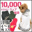 2012 Winter ASHU garment bag ¥ 10,000 / dog clothing and pet 5P13oct13_b