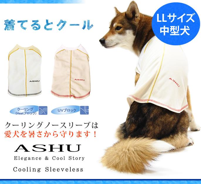 クーリングノースリーブは愛犬を暑さから守ります