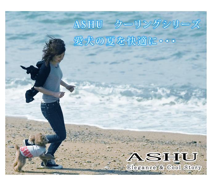 ASHUのクーリングシリーズで愛犬の夏を快適に