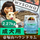 Early booking sale October-Wilson adult * old maintenance 2.27 kg-free adult dog food!