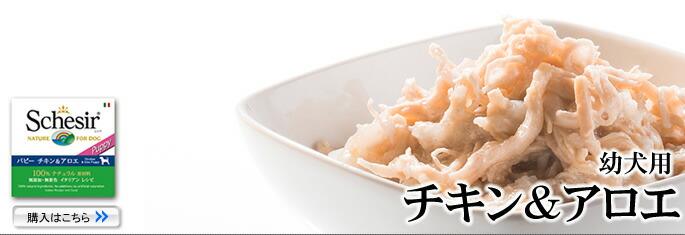 Schesir(シシア)/ドッグ ゼリータイプ チキン&アロエ