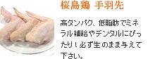 桜島鶏 手羽先