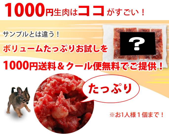 1000円生肉のココがすごい!