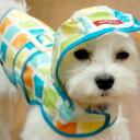 Waterproof S & S coat 5P13oct13_b