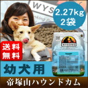Within Grosse 2.27 kg × 2 bag / puppy dog tear /WYSONG wysong Growth 5P13oct13_b to binges or non-additive safety pups dog puppy baby food