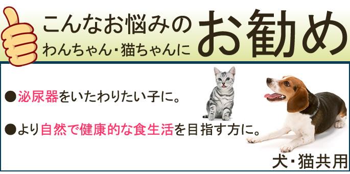 Evolution Naturally Cat Food Reviews