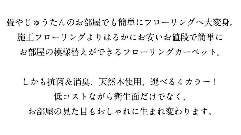 cs-00_05.jpg