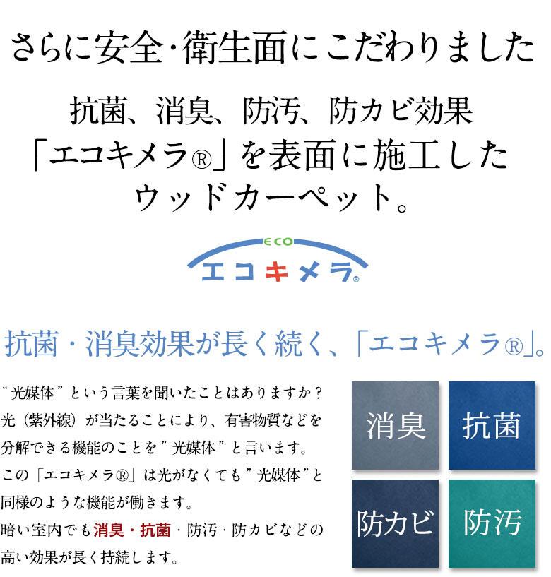 cs-00_08.jpg
