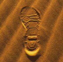 サハラ砂漠にふと足跡を残したくなって…