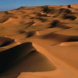 アルジェリア・サハラ
