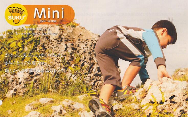Mini(15-22cm)