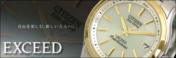 CITIZEN EXCEED EBG74-2792 TOP