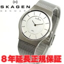 Scar gene SKAGEN watch men steel STEEL 233LSS