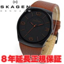 Scar gene SKAGEN watch men PERSPECTIV perspective SKW6040